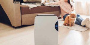 Best Filterless Air Purifiers