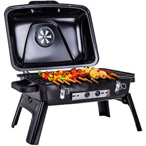 Pinty Portable Folding Charcoal Grill