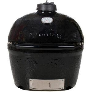 Primo Ceramic Charcoal Grill